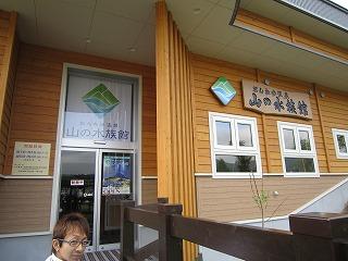 入口とigarashiさん